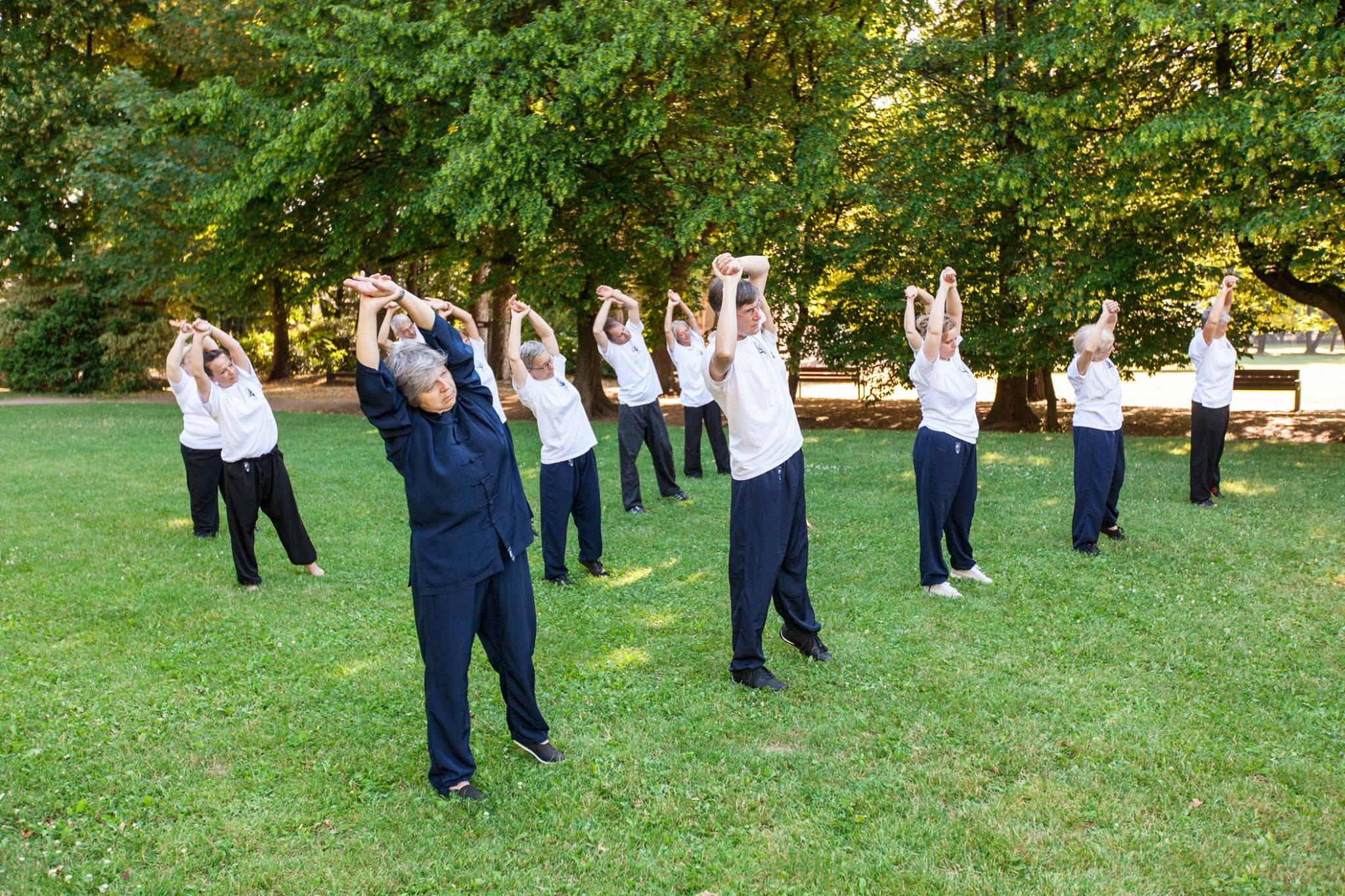Tai Chi Chuan art martial Clermont-Ferrand