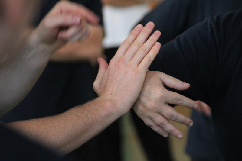 Principe du Tui Shou poussée des mains